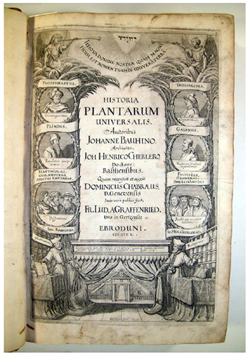 "Cover of Historia plantarum universalis, by Johann Bauhin and Johann Heinrich Cherler. Amatus face appears in a medallion in the left hand side, below, together with those of Pietro Andrea Mattioli or Matthiolus (1500-1577) and Guillandinus, with the subtitle ""Dissentimus"" (""we disagree"", a reference to a violent polemic between Amatus and Mattioli; Guimarães, (2013)"